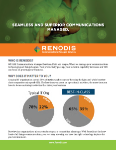 Renodis One Pager